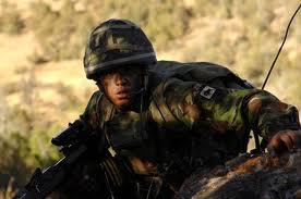 Grenadier Guards 2