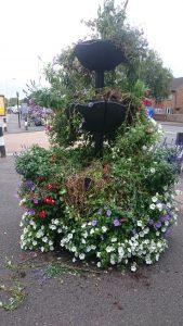 kingshill-flower-display-169x300